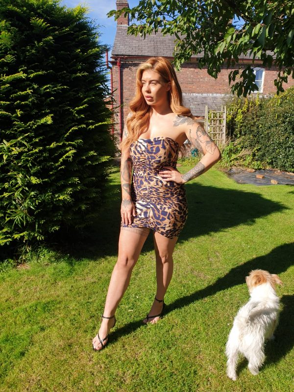 Mariella Leopard Print Jersey Mini Dress (1) - by we are curves clothing