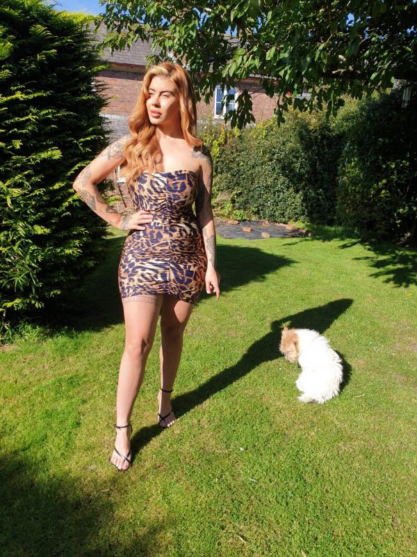 Mariella Leopard Print Jersey Mini Dress - by we are curves clothing